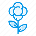 bloom, blossom, flower, flowering, flowers, gift, rose icon