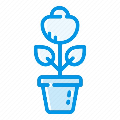 bloom, flower, flowering, flowers, gift, indoor plant, love icon