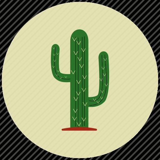 cactus, desert, flower, nature, plant icon