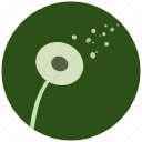 blossom, dandelion, flower, nature, plant icon