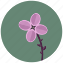 blossom, flower, lilac, nature, plant icon