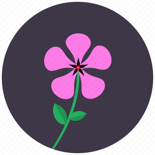 Blossom, flower, nature, periwinkle, plant icon - Download on Iconfinder