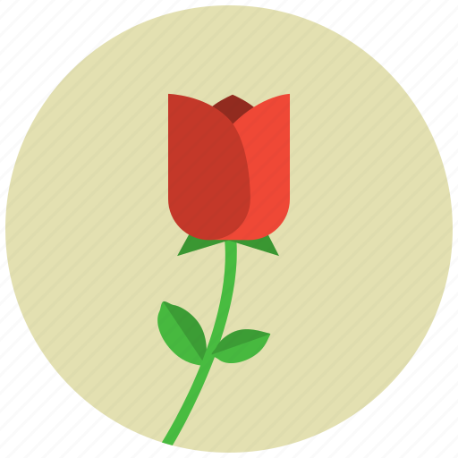 Blossom, flower, nature, plant, tulip icon - Download on Iconfinder