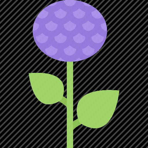 aster, flower, flowers, garden, gardener icon