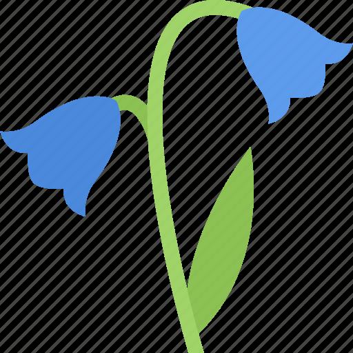 bellflower, flower, flowers, garden, gardener icon