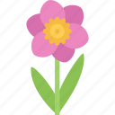 flower, flowers, garden, gardener, narcissus icon