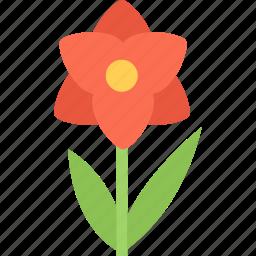 flower, flowers, garden, gardener, orchid icon