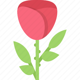 flower, flowers, garden, gardener, rose icon