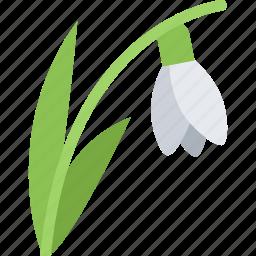 flower, flowers, garden, gardener, snowdrop icon