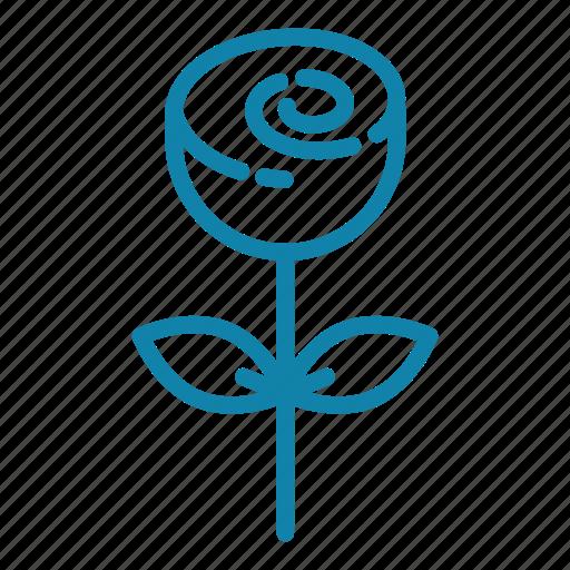 bloom, flower, flowering, flowers, gift, love, rose icon