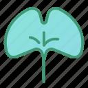 botanic, foliage, ginkgo, leaf, plant icon
