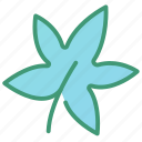 botanic, foliage, leaf, maple, plant icon