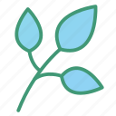 botanic, foliage, leaves, plant icon