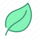 botanic, foliage, leaf, plant icon