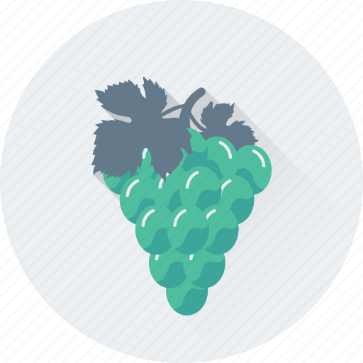 bunch of grapes, food, fruit, grapes, organic icon