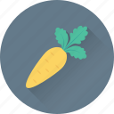 carrot, diet, food, nutrition, vegetable icon
