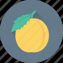 apricot, food, fruit, healthy food, peach