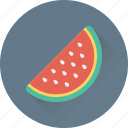 cantaloupe, food, fruit, tropical, watermelon icon
