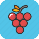 bunch of grapes, food, fruit, grapes, organic food icon