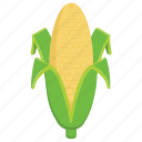 corn cob, corn stick, diet food, healthy food, nutrition food icon