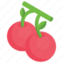 berries, cherries, cherry bunch, cherry fruit, stone fruit icon