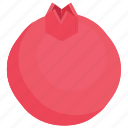 food, fruit, healthy fruit, pomegranate, seed fruit icon