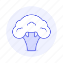 broccoli, cabbage, food, fruits, vegetables icon