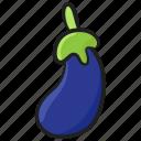 aubergine, brinjal, healthy diet, organic food, vegetable