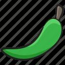 chili pepper, chilli, green chili, hot chili, vegetable