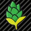artichoke, healthy food, natural diet, organic food, ripe vegetable