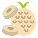 fruit, pineapple, sliced icon