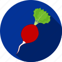 food, radish, restaurant, salad, vegetable icon