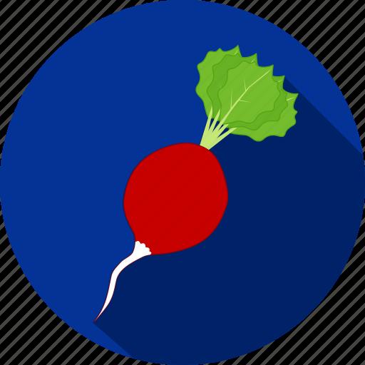 food, radish, restaurant, salad, vegetable icon