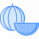 cooking, food, fruit, shop, supermarket, watermelon icon