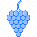 cooking, food, fruit, grape, shop, supermarket icon