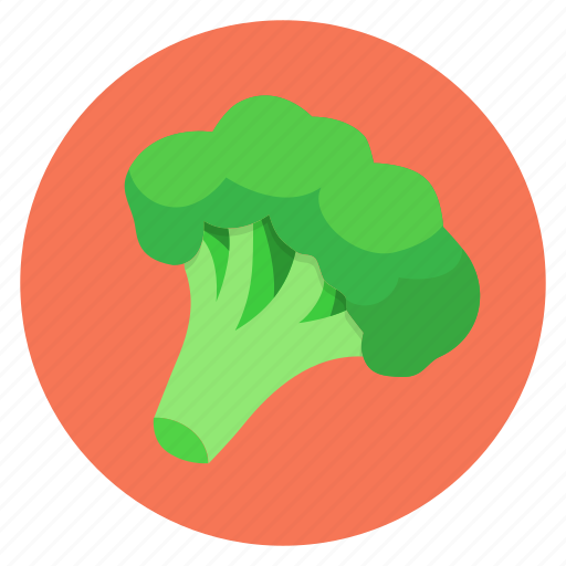 broccoli, color, food, vegetables icon