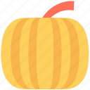 food, nutrition, vegetable, squash plant, pumpkin icon