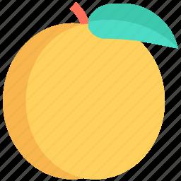 diet, food, fruit, healthy food, orange icon