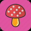 food, fungi, mushroom, oyster, toadstool icon