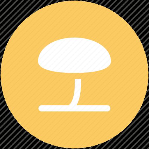 food, fungi, fungus, mushroom, oyster mushroom, vegetable icon