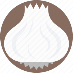 beetroot, bulb onion, common onion, onion, vegetable icon