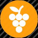 berries, food, fruit, fruits, grape, slot