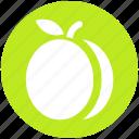 apricot, food, fruit, juicy, plum, prune icon
