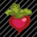 color, food, radish, vegetable, beetroot, vegan icon