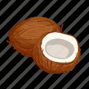 coconut, cooking, diet, food, nut, superfood, vegetarian icon