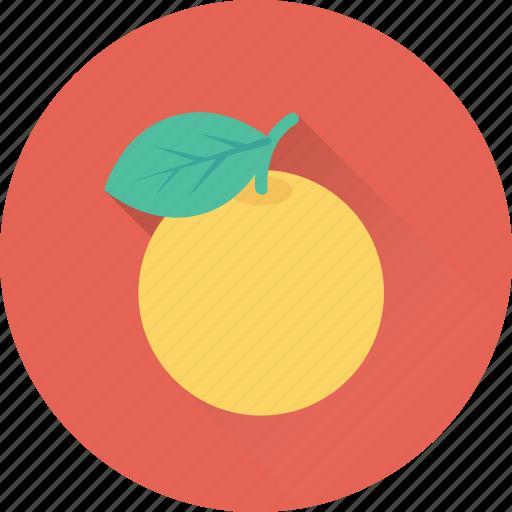 diet, food, fruit, healthy, orange icon