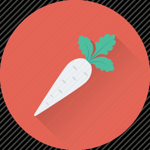 carrot, diet, food, root vegetable, vegetable icon
