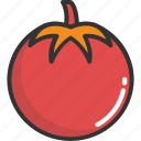 food, fruit, nutrition, tomato, vegetable icon