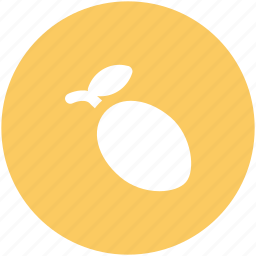 jamblang, jambolan, jambul, jamun, syzygium cumini icon