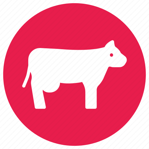 animal, beaf, cow, meat, milk icon